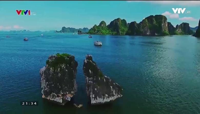 VTVTrip - Du lịch cùng VTV: Côn Đảo - Muôn màu hệ sinh thái