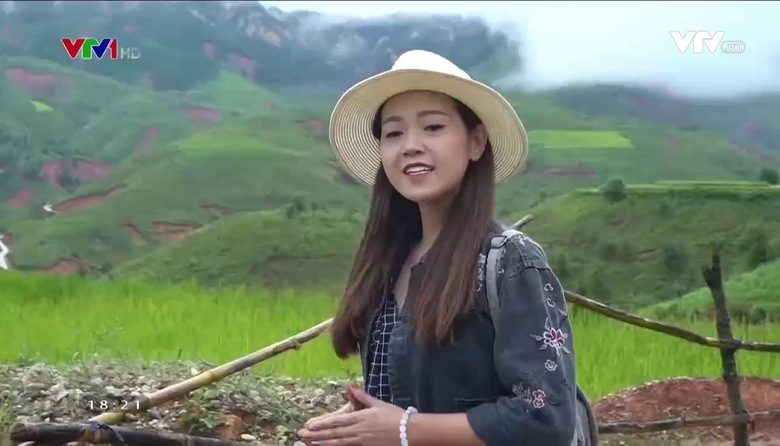 Nông nghiệp sạch: Sơn Tra (Táo Mèo) sản phẩm nông nghiệp tỉnh Yên Bái