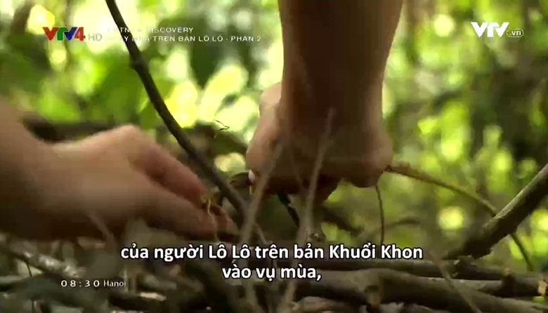 Vietnam Discovery: Ngày mùa trên bản Lô Lô - Phần 2