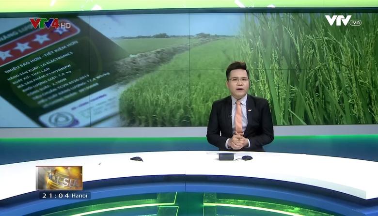Bản tin tiếng Việt 21h - 20/4/2017