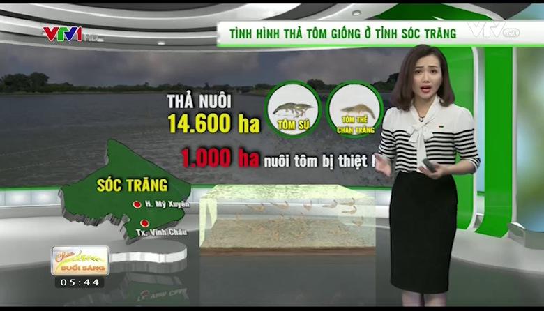 Bản tin thời tiết nông vụ - 23/5/2017
