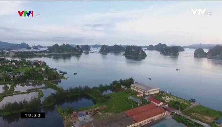 Nông nghiệp sạch: Nước mắm Cái Rồng sản phẩm nông nghiệp tỉnh Quảng Ninh