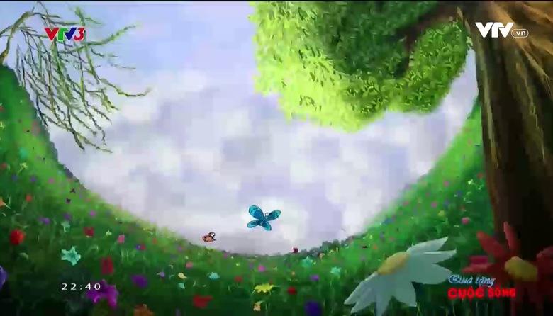 Quà tặng cuộc sống: Những bông hoa dại