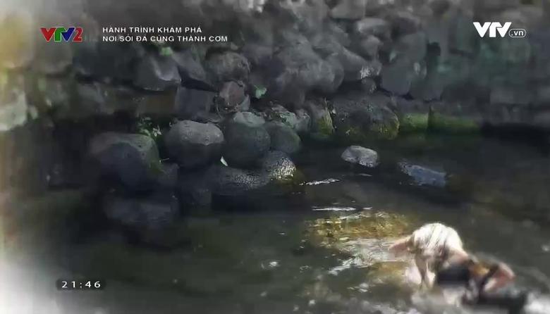 Hành trình khám phá: Nơi sỏi đá cũng thành cơm