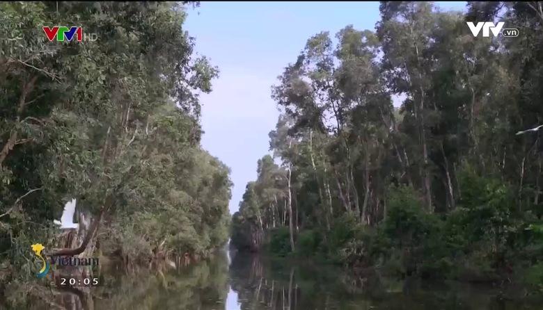 S - Việt Nam: Những chiếc chiếu hạnh phúc ở Lấp Vò