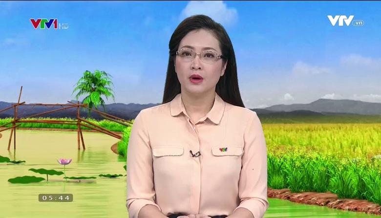 Bản tin thời tiết nông vụ - 20/8/2017