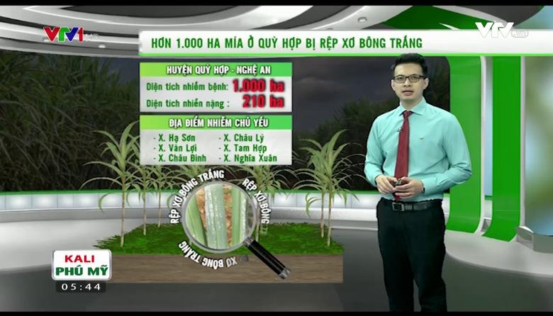 Bản tin thời tiết nông vụ - 21/9/2017