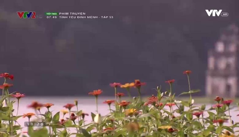 Đi VTV: Hà Nội quen mà lạ - Tập 3