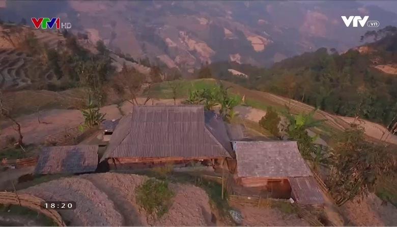 Nông nghiệp sạch: Củ cải Nương Hoàng Su Phì sản phẩm nông nghiệp tỉnh Hà Giang