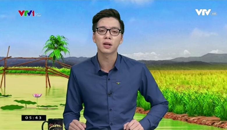Bản tin thời tiết nông vụ - 31/3/2017
