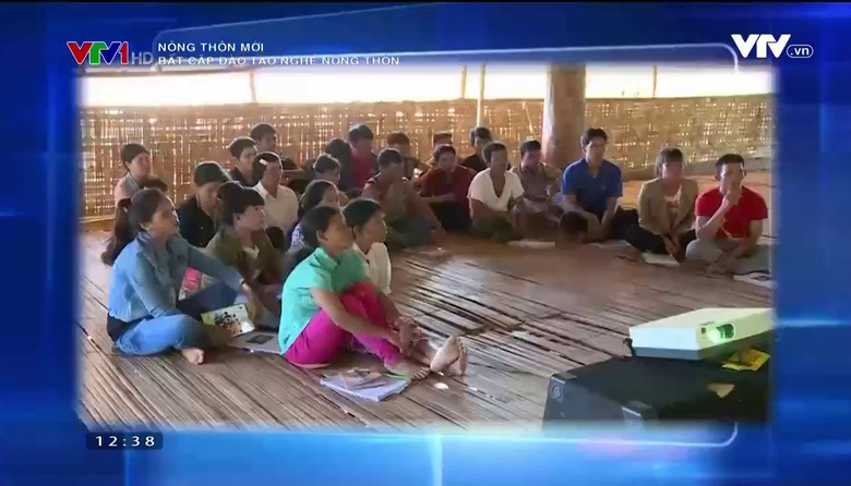 Nông thôn mới: Bất cập đào tạo nghề nông thôn