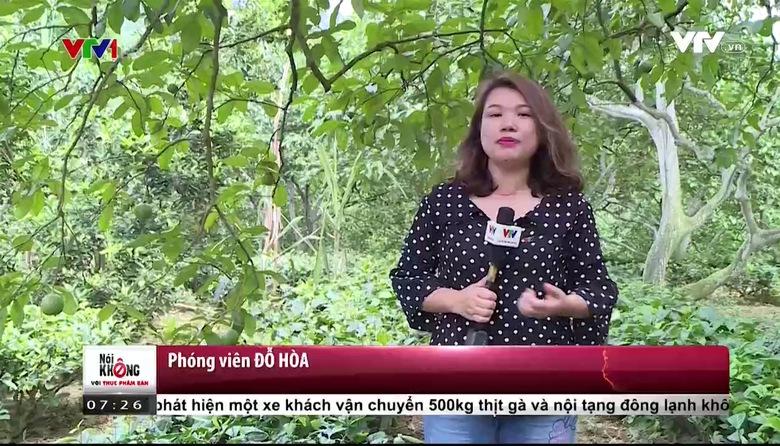 Nói không với thực phầm bẩn (7h25) - 28/4/2017