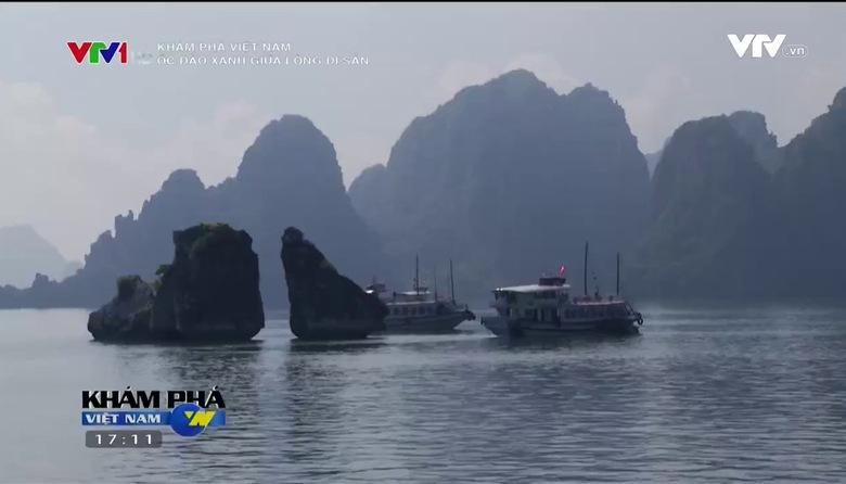 Khám phá Việt Nam: Ốc đảo xanh giữa lòng di sản
