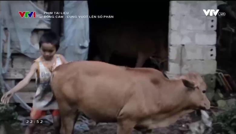 Phim tài liệu: Đồng cảm - cùng vượt lên số phận