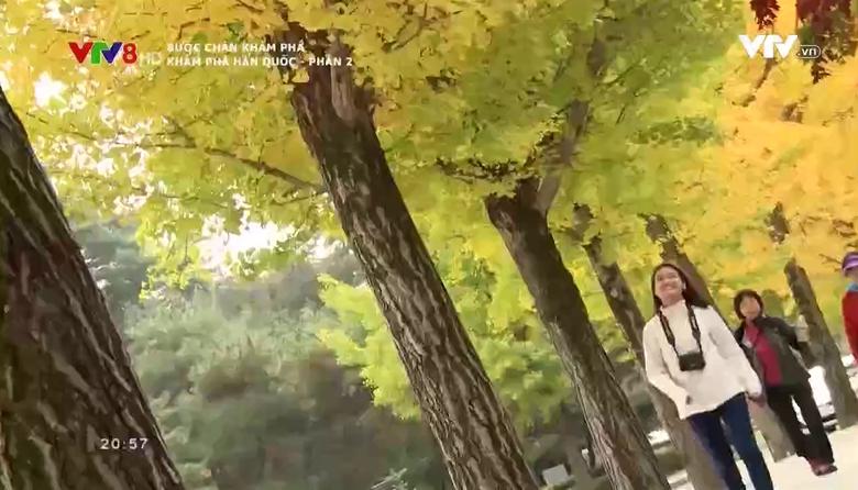 Bước chân khám phá: Khám phá Hàn Quốc - Phần 2
