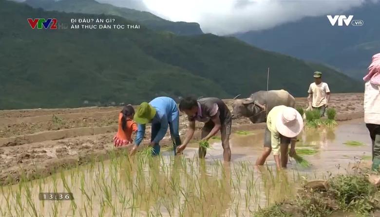 Đi đâu ? ăn gì ?: Ẩm thực dân tộc Thái