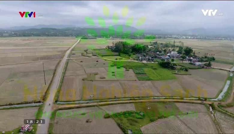 Nông nghiệp sạch: Mạch Nha sản phẩm nông nghiệp tỉnh Quảng Ngãi