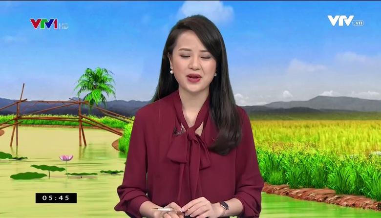 Bản tin thời tiết nông vụ - 26/5/2017