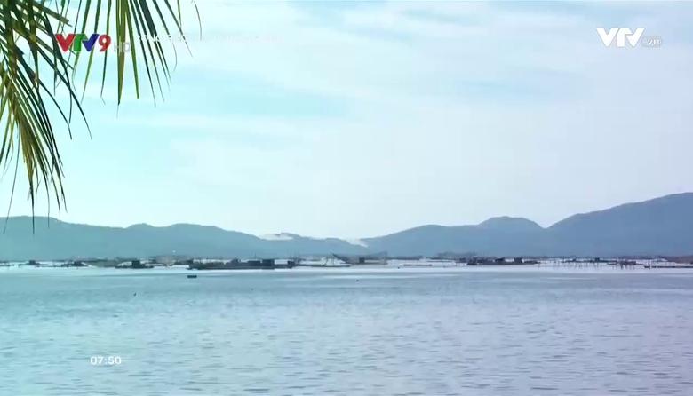 Rong ruổi đất phương Nam: Bình yên trên vịnh Xuân Đài