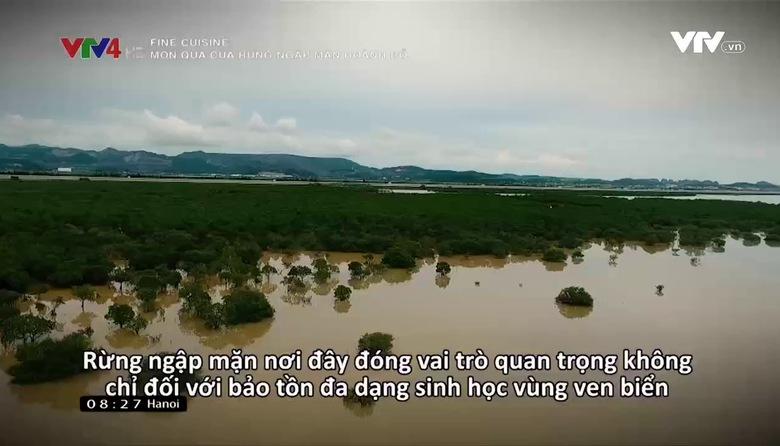 Fine Cuisine: Món quà của rừng ngập mặn Hoành Bồ