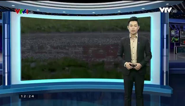 Bản tin thời tiết 12h30 - 19/9/2017