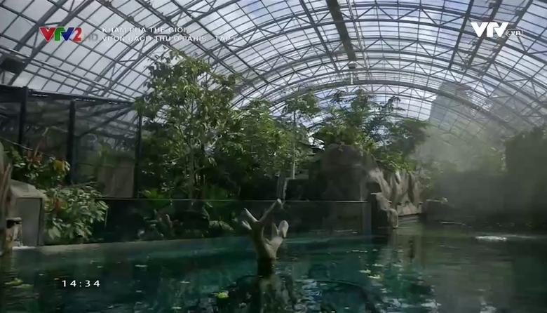 Khám phá thế giới: Vườn bách thú ở Paris - Tập 6