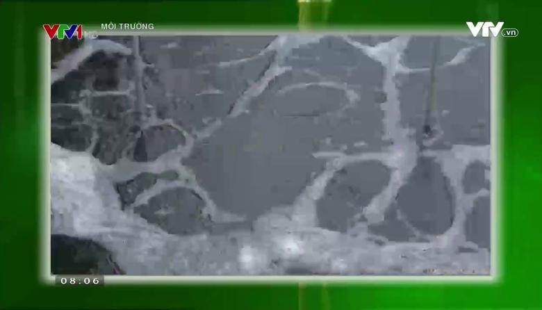Môi trường: Xử lý nước thải sinh hoạt ở các đô thị