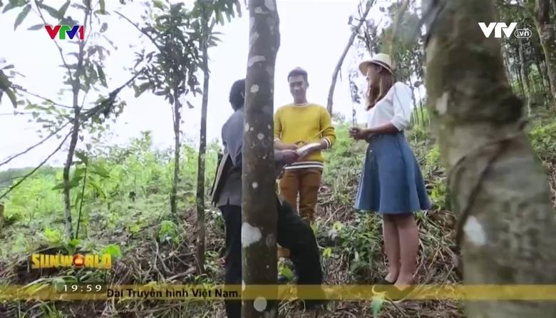 S - Việt Nam: Thước đo 'sự giàu có' của người Cor ở Trà Bồng