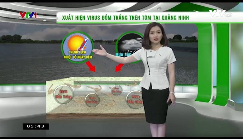 Bản tin thời tiết nông vụ - 24/4/2017