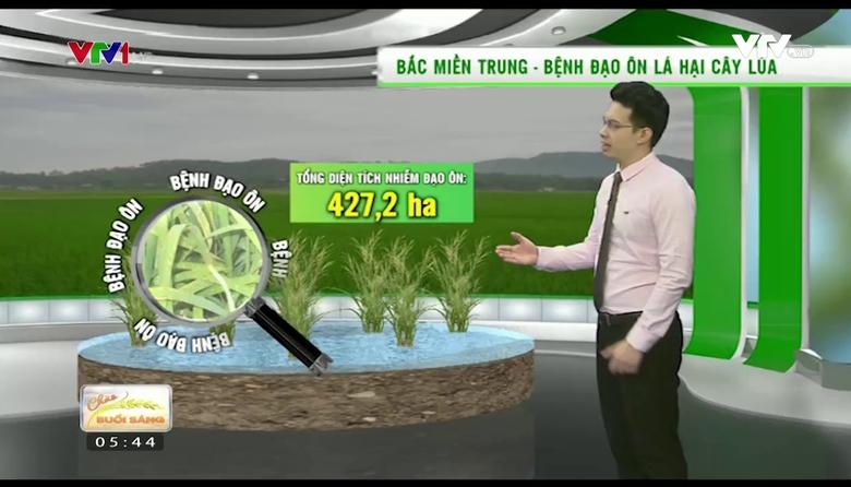 Bản tin thời tiết nông vụ - 25/4/2017