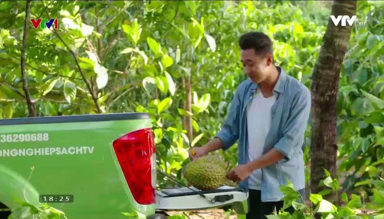 Nông nghiệp sạch: Sầu Riêng sản phẩm nông nghiệp tỉnh Đăk Nông
