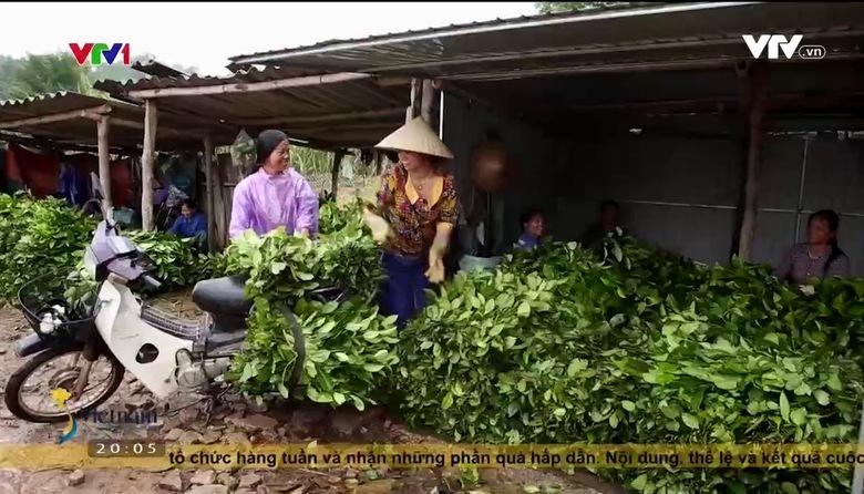 S - Việt Nam: Vùng đất nụ cười Cao Sơn Anh Sơn, Nghệ An