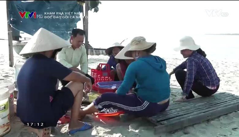 Khám phá Việt Nam: Độc đáo gỏi cá Nam Ô