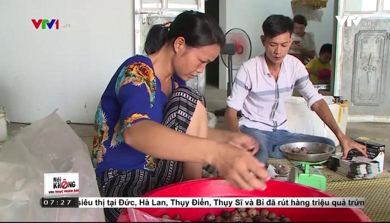 Nói không với thực phẩm bẩn (7h25) - 11/8/2017