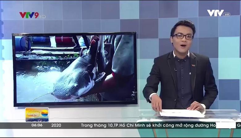 Sáng Phương Nam - 14/9/2017