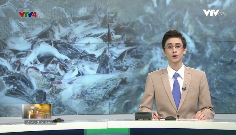 Bản tin tiếng Nga - 18/9/2017