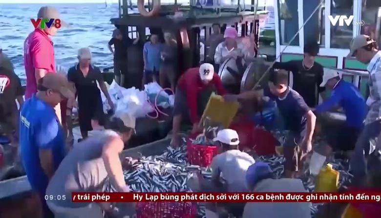 Bản tin 9h VTV8 - 24/9/2017